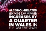 Alcohol-Related Brain Damage increases by a quarter in Wales in five years